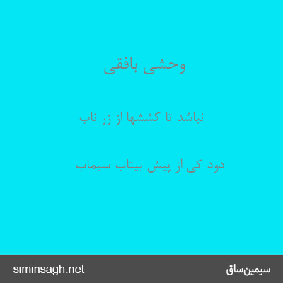 وحشی بافقی - نباشد تا کششها از زر ناب