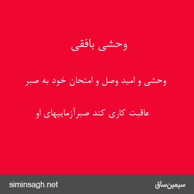 وحشی بافقی - وحشی و امید وصل و امتحان خود به صبر